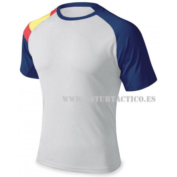 Camiseta 2 tonos de azul y bandera en el brazo
